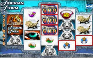 siberian storm slot win both ways topshopcasino